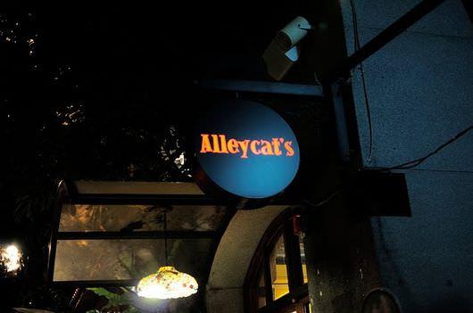 [食記] Alleycat's Pizza 巷貓披薩餐廳@現烤現吃、貓咪陪你玩