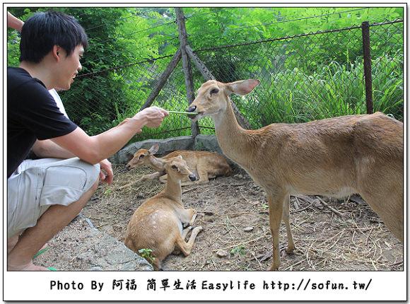 东芭乐园&七珍佛山&绿山国家动物园&