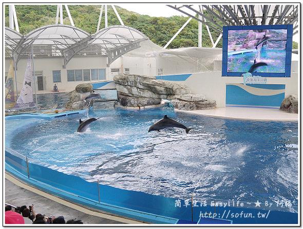 [遊記] 花蓮必去遊樂園 ~ 遠雄海洋公園@看劇場表演、玩遊樂設施