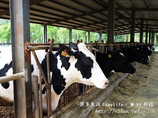 [花蓮旅遊] 瑞穗牧場@品嚐香醇濃郁乳製品、北回歸線紀念碑溜達