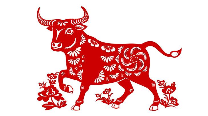 [算命] 2021 牛年運勢 | 110 年牛年生肖運勢 | 瑪法達星座命盤、八字算命查詢